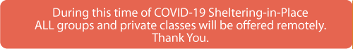 covid-taught-remotely-500